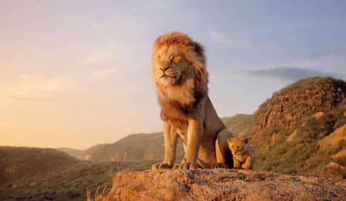 il re leon the lion king mufasa disney film cgi sequel prequel