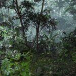 unreal-engine-5-foresta